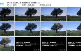 【高清实拍素材】实拍荒原上的一棵树视频素材(延时摄影)