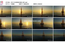4K实拍视频素材丨夕阳下白色的帆船在海面上航行