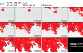 高清实拍视频素材丨红色墨水滴入水中
