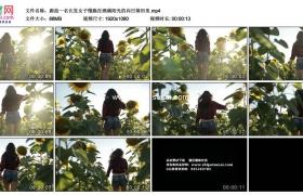 高清实拍视频素材丨跟拍一名长发女子慢跑在洒满阳光的向日葵田里
