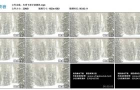 【高清实拍素材】冬季飞雪中的树林