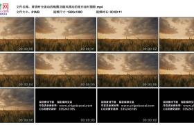 高清实拍视频丨黄昏时分流动的晚霞及随风摆动的麦田延时摄影