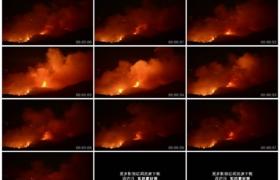 4K实拍视频素材丨夜晚拍摄森林火灾 山火燃烧