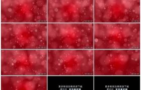 高清动态视频素材丨红色背景上白色的雪花动态背景