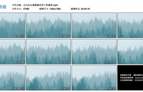 高清实拍视频丨从右向左摇摄暴风雪下的森林