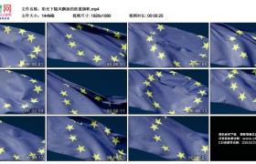 高清实拍视频丨阳光下随风飘扬的欧盟旗帜