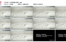 4K实拍视频素材丨白色面粉撒落在面板上