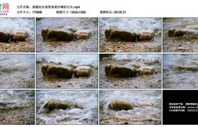 高清实拍视频丨清澈的水浪席卷着沙滩的石头