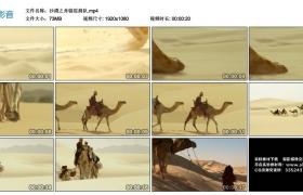高清实拍视频丨沙漠之舟骆驼商队
