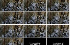 高清实拍视频素材丨森林里映照着树木倒影的水面上荡起层层涟漪