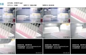 高清实拍视频丨科研-生物科学