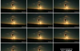 高清实拍视频素材丨逆光照射下跳动着残缺的蒲公英