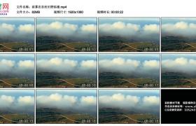 高清实拍视频丨浓雾在农村田野弥漫