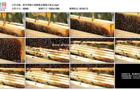 高清实拍视频素材丨特写养蜂人将蜂巢从蜂箱中拿出