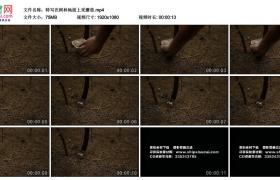 高清实拍视频丨特写在树林地面上采蘑菇