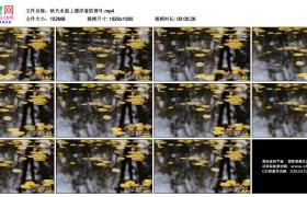 高清实拍视频素材丨秋天水面上漂浮着的黄叶