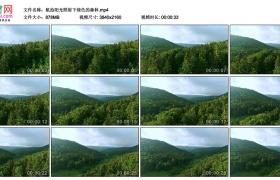 4K实拍视频素材丨航拍阳光照射下绿色的森林